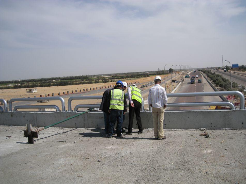 Cairo alex road (3)